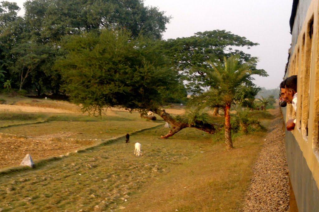 Hili area 1
