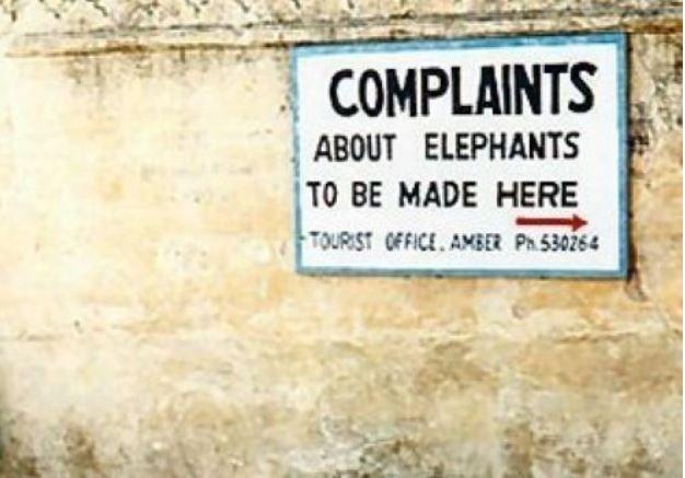Elephant complaint