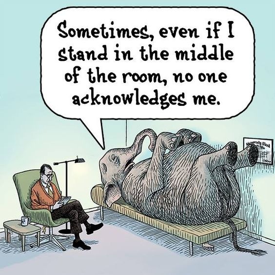 Elephant in the room 2
