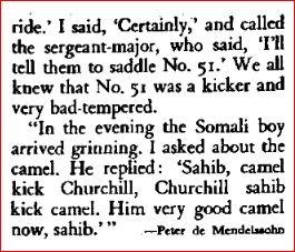 Churchill camel 2